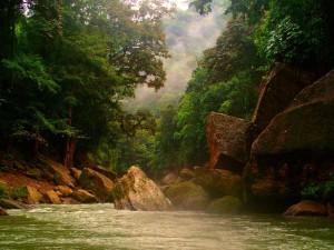 Rio Platano Bio Reserve