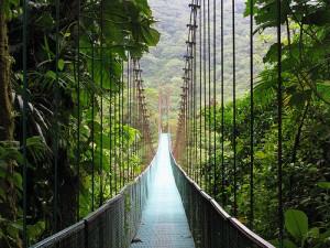 monteverde-cloud-forest-reserve-suspense-bridge